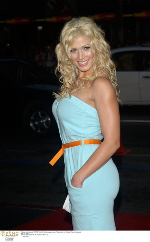 Torrie Wilson Hot Photos And Sexy Wallpapers | Blogging Made Easier