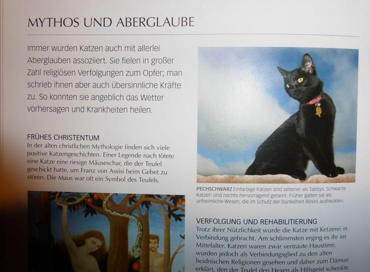 Mittelalterliche Katzenverfolgung durch die Kirche hubwen