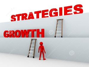 Is Your Growth Strategy Flying Blind?