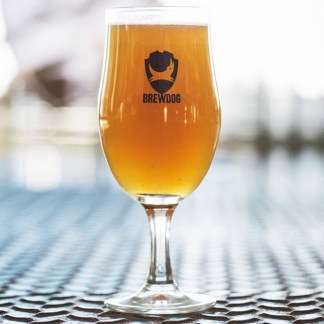 BrewDog METAL SHIELD