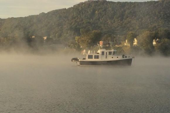 Tug in the Mist