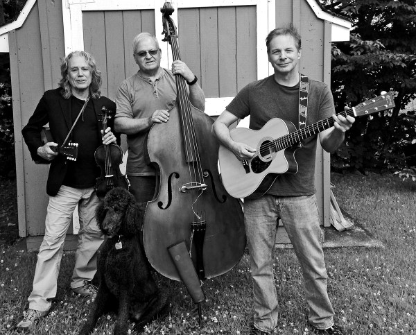 Bluegrass Timey Concert Held - Hudson Valley
