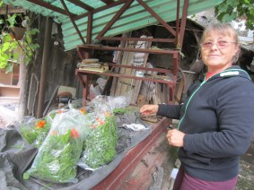 erzsebet packing herbs