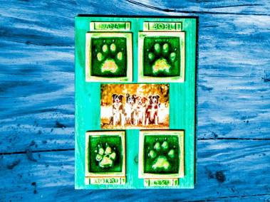 cuatro-huellas-perros