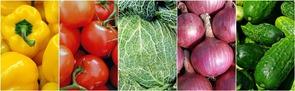 vegetables-1499906__180