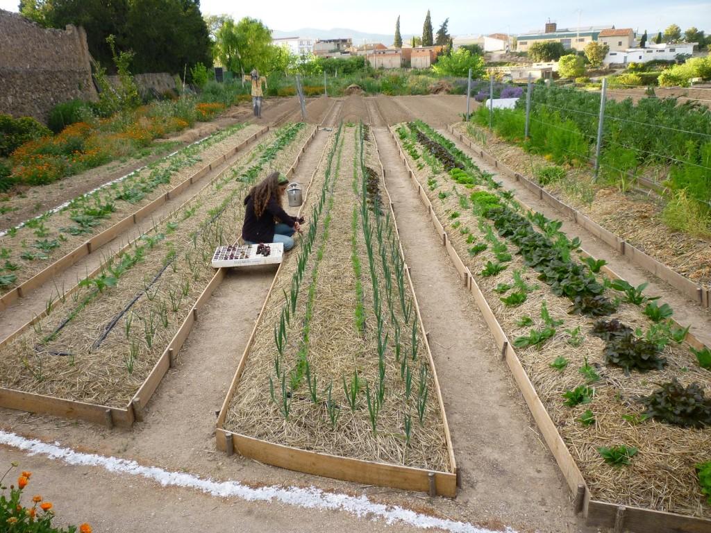 Permacultura HuertaJardn del Boticario Centro de Vida y