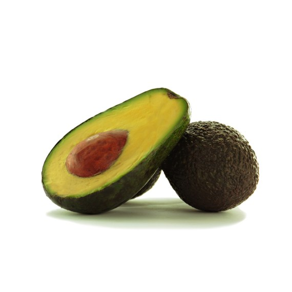 aguacate de la costa tropical