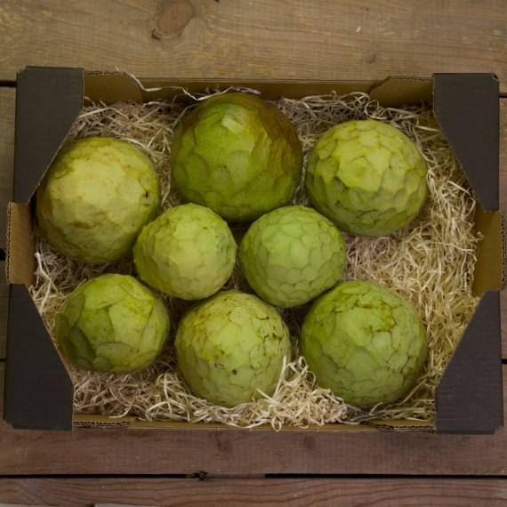 caja de 4 kilogramos de chirimoya cultivada en Salobreña y Almuñecar