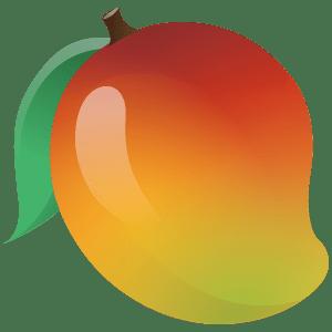 icono e ilustración de un mango