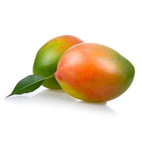 mango keitt de la Costa Tropical de Granada y Málaga