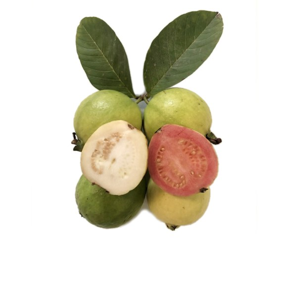 comprar guayabas fresa limón a domicilio