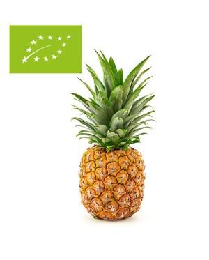 comprar piña ecológica y bio online a domicilio
