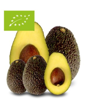 comprar aguacate baby mini hass ecológico bio