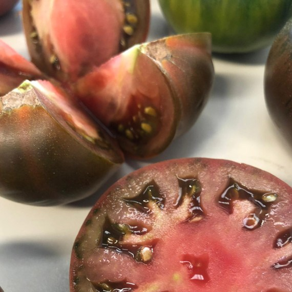 tomate negro asurcado abierto