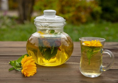 Té de caléndula » Preparación, beneficios y recetas