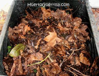 hojas en el cajón de compostaje