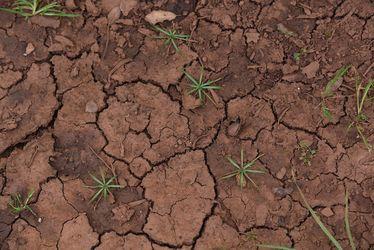 tierra seca, compactada y rajada.