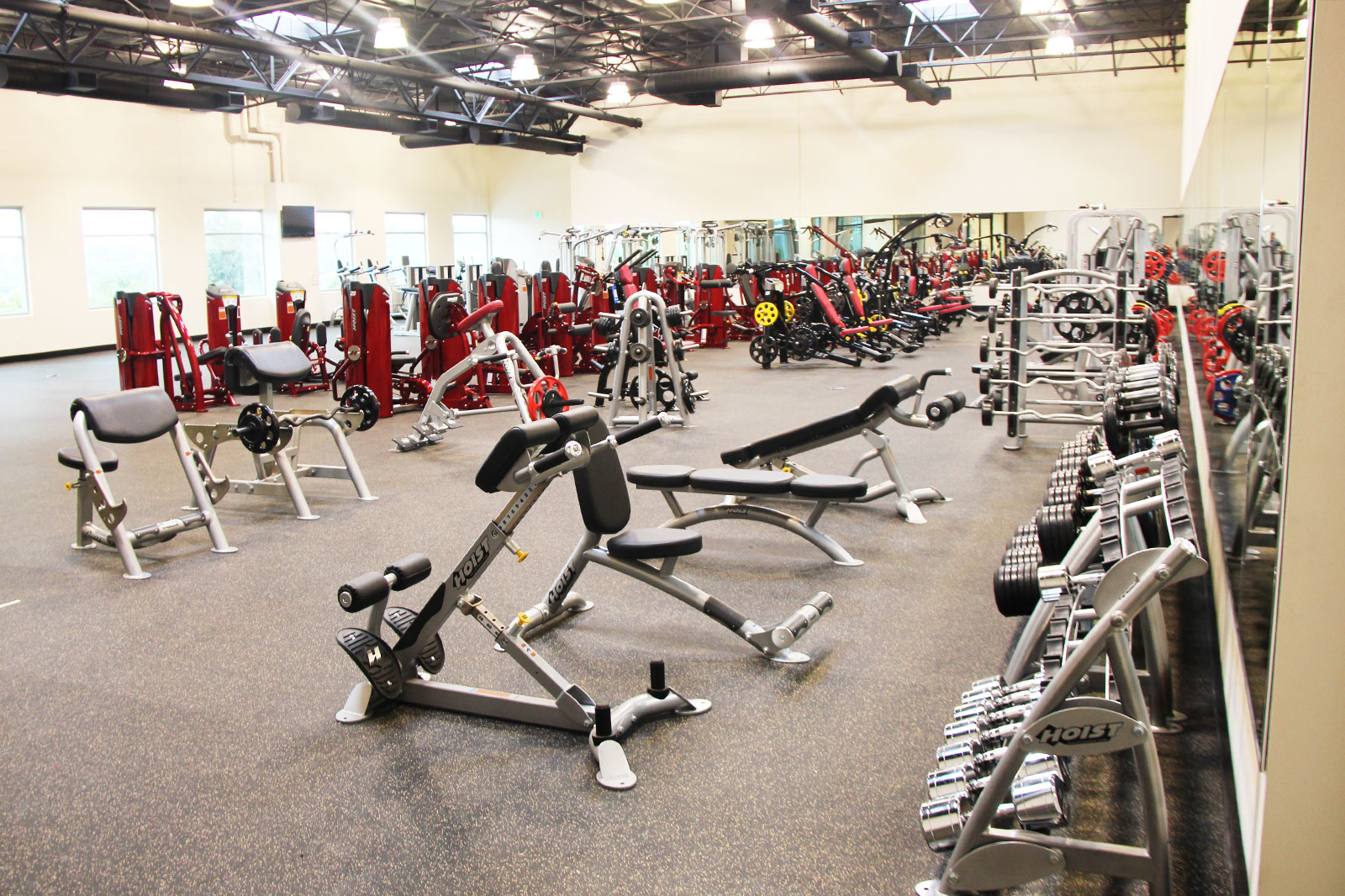 Hoist Fitness Systems