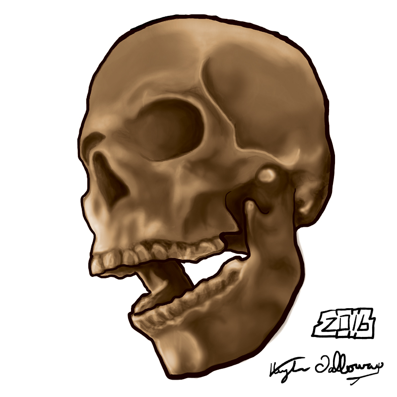 Digital Painting Skull