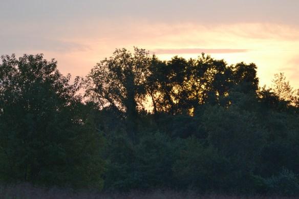 Sunrise at Terrapin