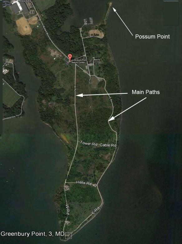Greenbury Point