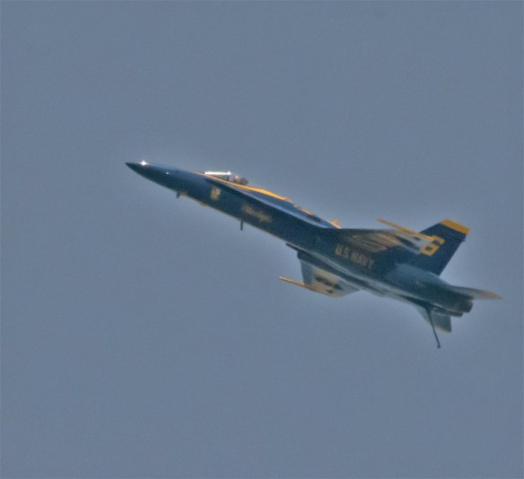 Blue Angels 10