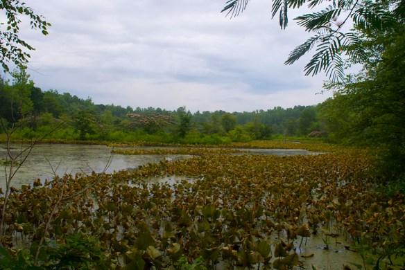 GB Lake 3