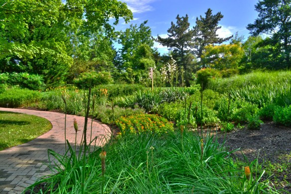 Tawes Gardens 1