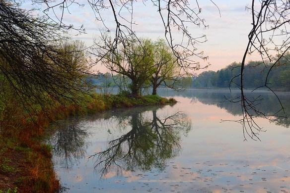 Lake Artemesia 83