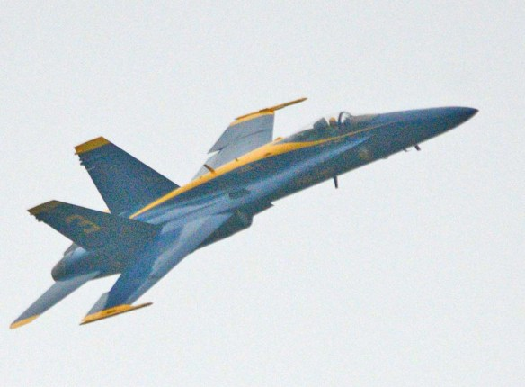 Blue Angels 42