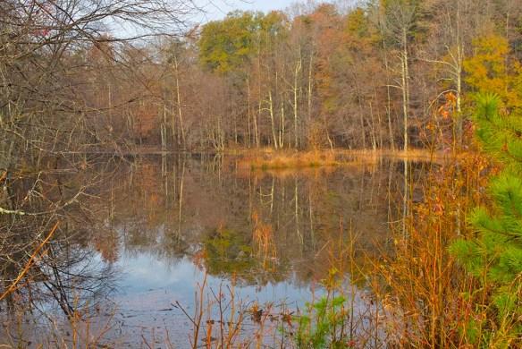 Goose Pond 3