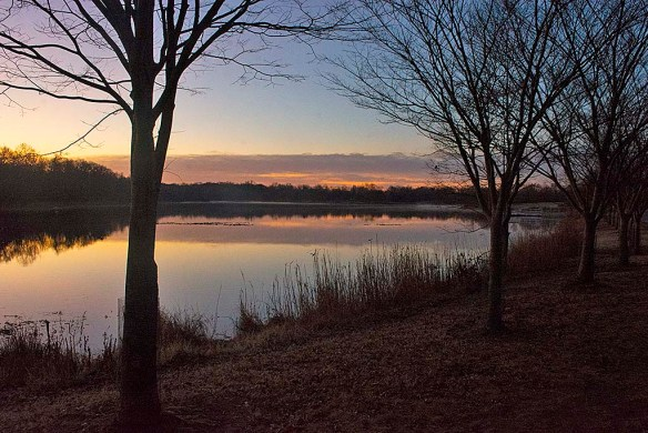 Lake Artemesia 119