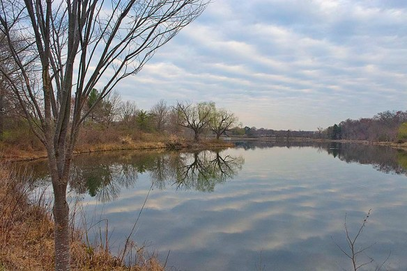 Lake Artemesia 124