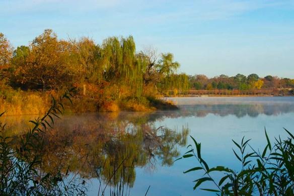 Lake Artemesia 140