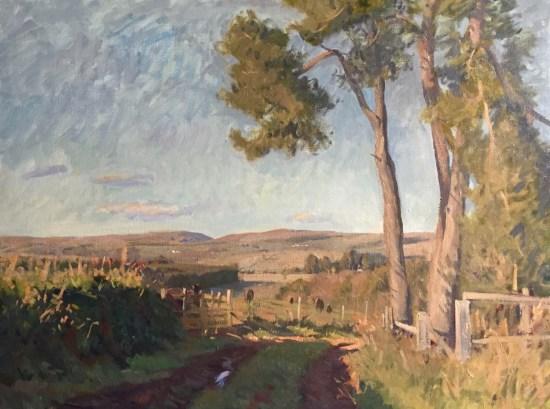 hugo saloschin landscape