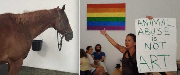 horse-exhibit-protest-1024x428