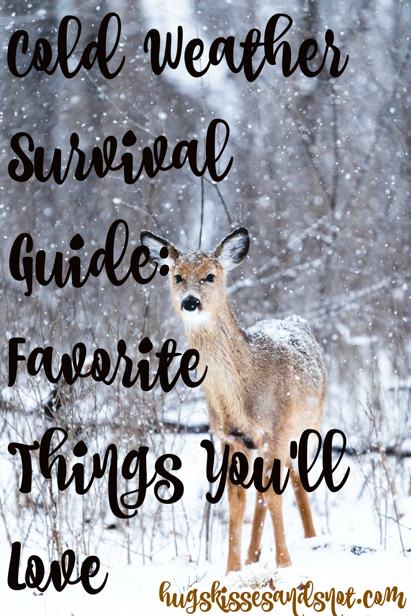 Cold Weather Survival Guide Favorite Things You Ll Love