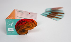 Drugs and the Brain Wallet Card