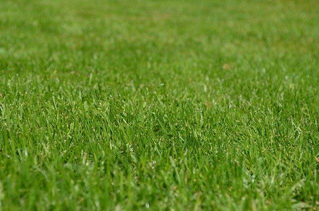 waarom graszoden