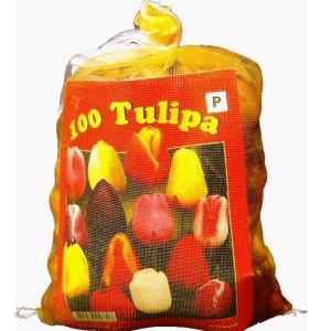 Tulpen Triumph Mix (Voordeelzak)