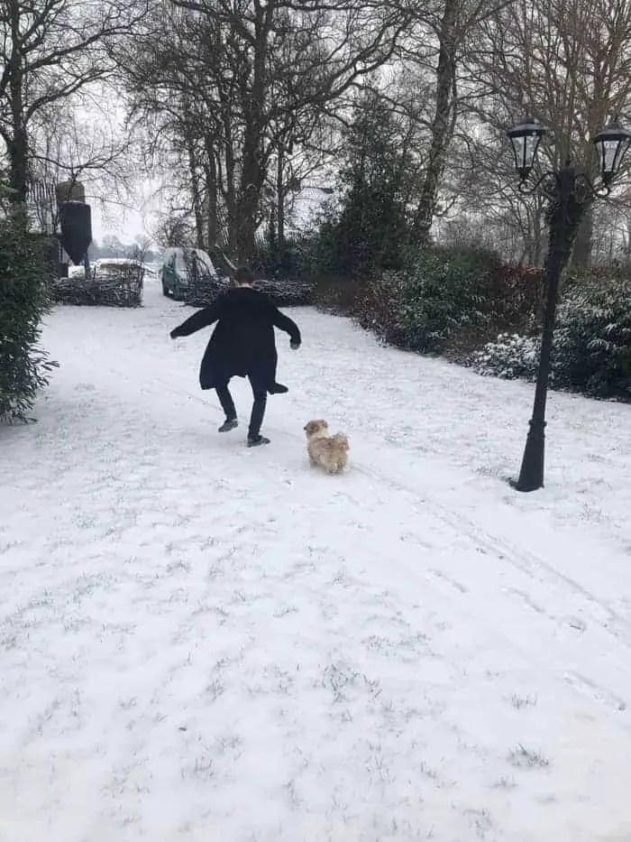 Hond uitlaten in de sneeuw. Op crocs.