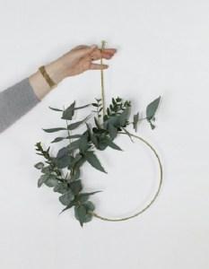 krans eucalyptus
