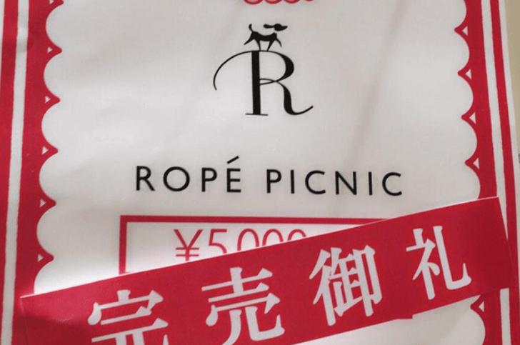 ロペピクニック 福袋