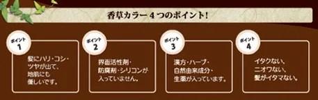 白髪染め(香草カラー)
