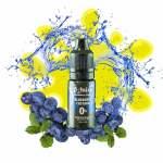 Blueberry Custard by V-Juice