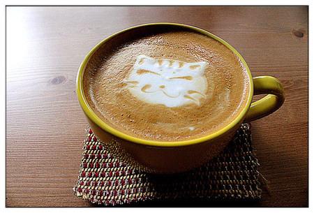 台南中西區 喵喵拿鐵來一杯❤< 貓門咖啡 Cafe' Moment>