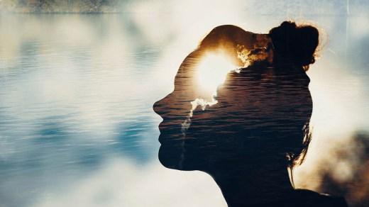 Популярные мифы о мозге человека