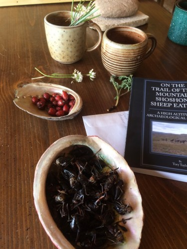 An array of paleo foods Taylor harvested from Wyoming's high country including Mormon crickets, rosehips, biscuit root, and wild onions.