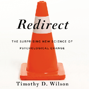 Redirect: Changing The Stories We Live By by Timothy D. Wilson