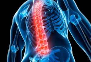 Biomedical engineering researcher Vivian Mushahwar is developing spinal implants that could one day restore the ability to stand and walk in patients with paralysis.